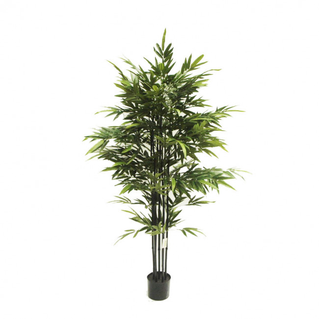 NWTURF  ARTIFICIAL BAMBOO BAMBUSA BLACK STEM 1.8M WITH 1408 LEAVES