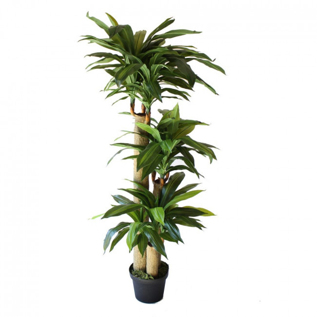 NWTURF ARTIFICIAL DRACENA TREE 1.6M WITH 168 LEAVES