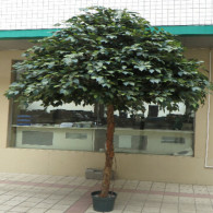 NWTURF Artificial FICUS PREMIUM DELUXE GIANT CANOPY TREE 3.5M WITH 11760 LEAVES Indoor Outdoor Plastic Plant
