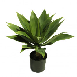 AGAVE GREEN 45CM