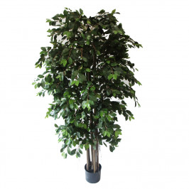 NWTURF ARTIFICIAL FICUS RETUSA WITH HANGING ROOTS 1.8M WITH 2065 LEAVES