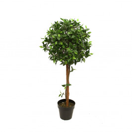 FICUS BALL TREE 1.2M WITH 876 LEAVES