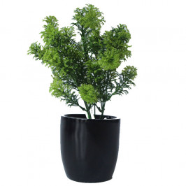 NWTURF ARTIFICIAL PARSLEY BUSH 35CM COMPLETE IN FIBREGLASS POT