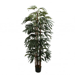 NWTURF RAPHIS PALM 1.8M WITH 530 LEAVES
