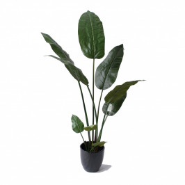 NWTURF Artificial TRAVELLER PALM 1.8M WITH FIBERGLASS POT Indoor Outdoor Plastic Plant