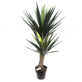YUCCA TREE 1.2M WITH 65 LEAVES